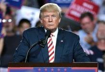 23 Inspirational Donald Trump Quotes On Success