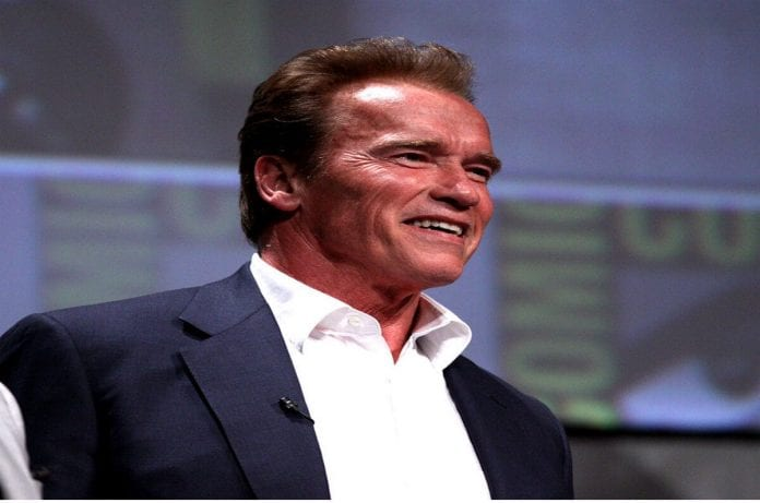 25 Inspirational Arnold Schwarzenegger Quotes On Success